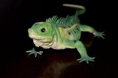 绿色玩具蜥蜴 免版税库存图片