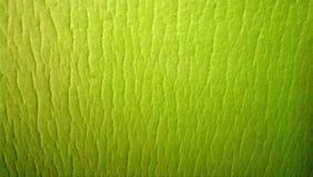 绿色现代背景 免版税库存图片