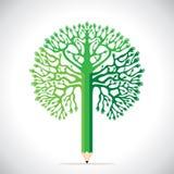 绿色现有量铅笔 免版税库存图片