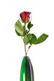 绿色玻璃花瓶的唯一红色罗斯 库存图片