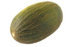 绿色瓜 免版税图库摄影