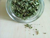 绿色瓶子茶 免版税库存图片