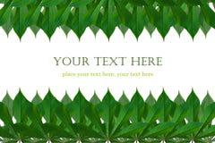 绿色留下框架 库存图片