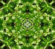绿色留下瓦片模式背景 免版税图库摄影