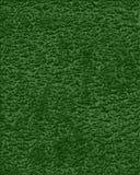 绿色皮革 免版税图库摄影