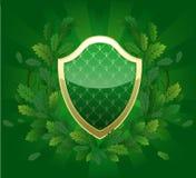 绿色盾 免版税图库摄影
