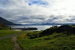 绿色秋天草在阳光、码头和公园长椅下 图库摄影
