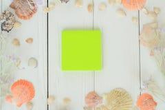 绿色空白纸和贝壳在木背景 背景更多我的投资组合旅行 免版税库存照片