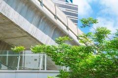 绿色空间和树臭氧新鲜空气的在城市 免版税库存照片
