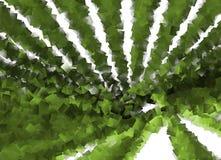 绿色立方体漩涡设计 库存照片