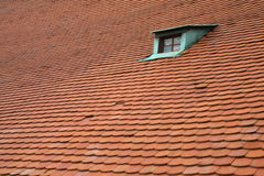绿色红色屋顶视窗 免版税库存照片