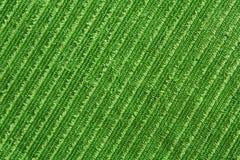 绿色纹理毛巾 免版税库存图片
