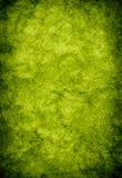绿色纹理葡萄酒 库存照片
