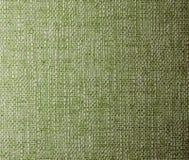 绿色纹理 免版税库存照片
