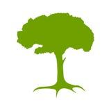绿色结构树剪影。 库存例证
