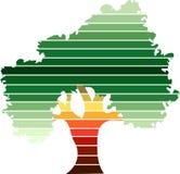 绿色结构树徽标 免版税库存图片