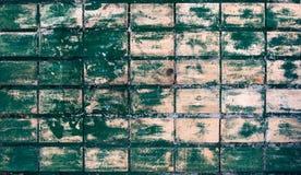 绿色绘了铺磁砖的墙壁 免版税库存照片