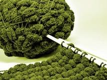 绿色羊毛 免版税图库摄影