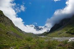 绿色美丽的山沟,俄罗斯联邦,高加索看法, 免版税库存照片