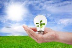 绿色能源概念 免版税库存图片