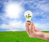 绿色能源概念 库存图片