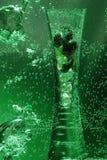 绿色花瓶水 免版税图库摄影