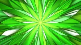 绿色花 免版税图库摄影