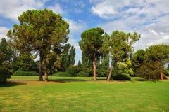 绿色草坪公园sigurta 免版税库存照片