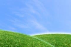 绿色草坪和天空背景 库存图片