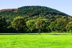 绿色草坪和老树在Margam国家停放地面,鲸鱼 免版税库存图片