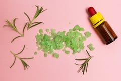 绿色草本盐、迷迭香和精油在桃红色背景 库存图片