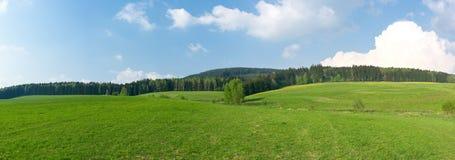 绿色草甸全景 库存照片