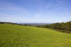 绿色草甸和约克谷  免版税库存照片