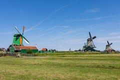 绿色草甸和老风车在赞瑟斯汉斯,荷兰,欧洲 免版税库存照片