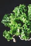 绿色莴苣在白色砖墙,在厨房用桌,空间嘲笑上的新鲜的健康沙拉食物背景离开,节食叶子 库存图片