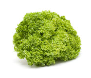 绿色莴苣沙拉 免版税库存照片