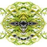 绿色菜纹理的抽象友好的妖怪面孔 亲切罪恶,恶魔,星期五的概念第13,万圣夜 库存图片