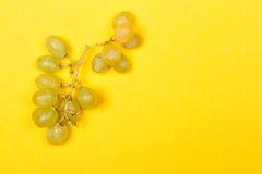 绿色葡萄束 免版税库存照片