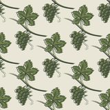 绿色葡萄的无缝的样式 库存例证