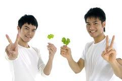 绿色藏品地方教育局人 免版税库存照片