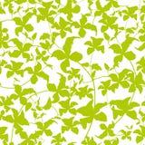 绿色藤的无缝的传染媒介样式与叶子的 库存例证