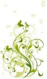 绿色藤 向量例证