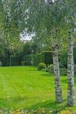 绿色豪华的草坪和庭院 免版税库存照片