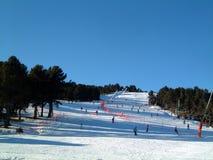 绿色运行滑雪 库存照片
