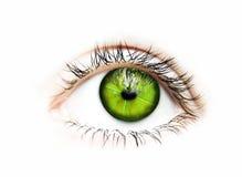 绿色远见眼睛 免版税库存图片