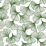 绿色银杏树叶子无缝的样式,自然本底传染媒介抽象概述  向量例证