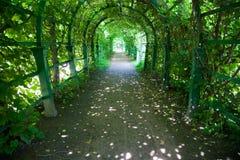 绿色长的隧道 免版税库存图片