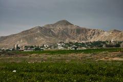 绿色领域和一座山在耶利哥附近 免版税图库摄影