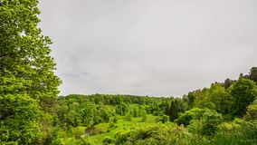绿色领域和多云天空timelapse 美好的夏天横向 股票录像