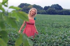 绿色领域的女孩在红色礼服 图库摄影